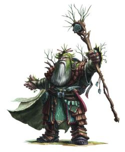 Druid 18