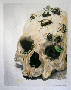 skull-insects
